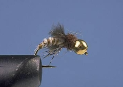 Bead Head Caddis Pupa